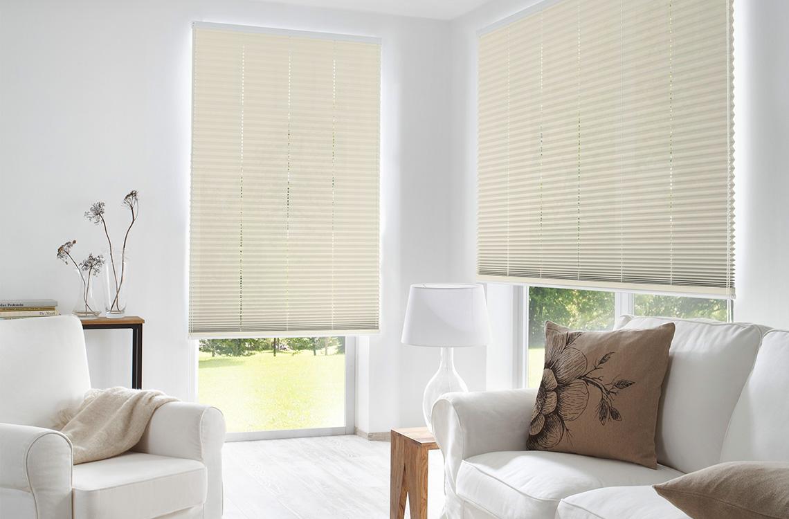 plissee polen top berlin grn with plissee polen top mhz horizontal jalousie twinline fr. Black Bedroom Furniture Sets. Home Design Ideas